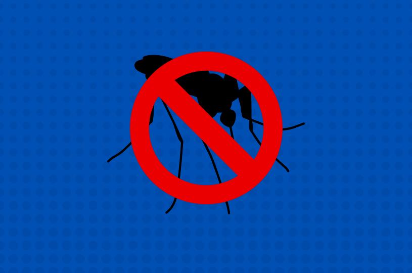 Saiba como denunciar os focos do Aedes aegypti