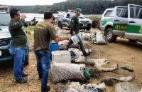 Pesca proibida em rios e lagos a partir desta quinta-feira (1°)
