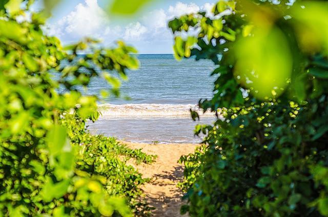 Prefeitura monitora chegada do óleo nas praias