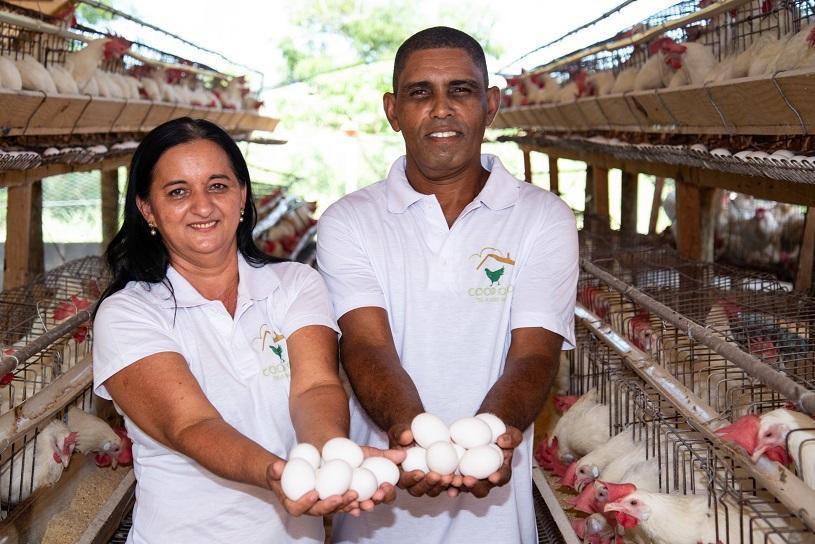 Após 30 anos como mecânico, criador aposta na produção de ovos na Serra