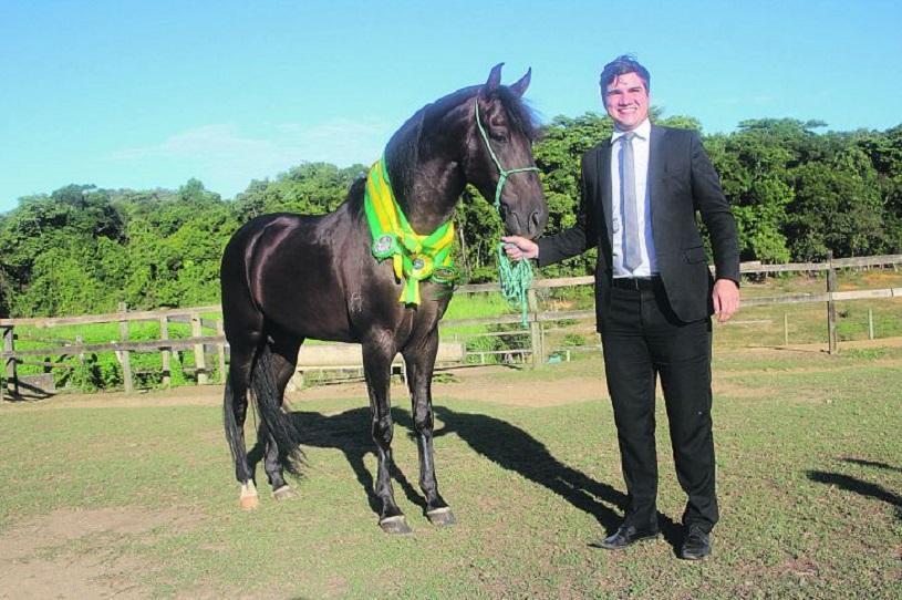 Cavalo de R$ 1 milhão é destaque em competição na Serra neste sábado