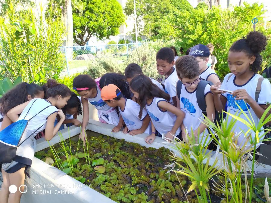Mais de 2 mil visitantes no Espaço Botânico do Parque da Cidade