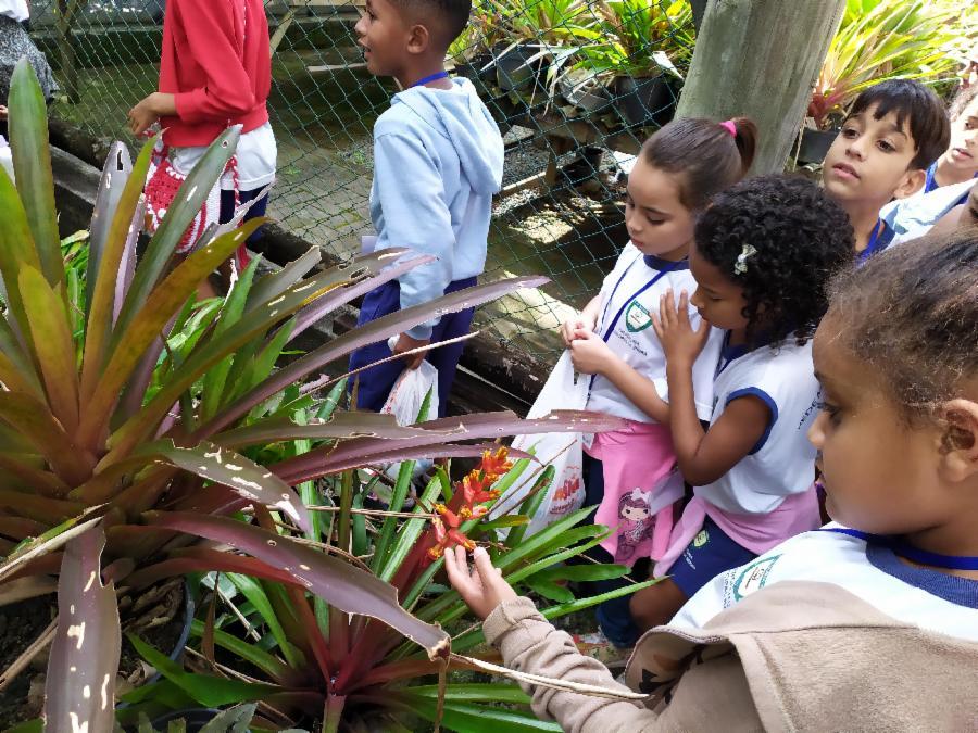 12 projetos de Educação Ambiental são inscritos em Chamamento Público