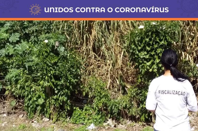 Fiscalização já notificou para limpeza mais de 1.400 terrenos neste ano