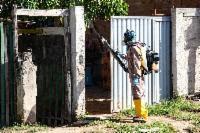 Mais de 2.400 imóveis protegidos durante supermutirão contra a dengue